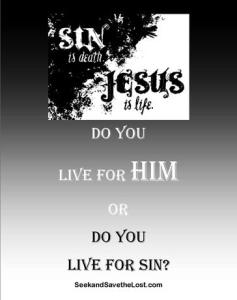 Seek and Save Live for Him or Live for Sin website Pic